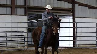 Pickup and First Day of Training a Wild Horse || Extreme Mustang Makeover 2018 || Aiden Kramer