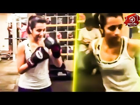 Trisha Boxing Video Leaked! Is This Training For Vijay Sethupathi or Arvind Swamy Movie?