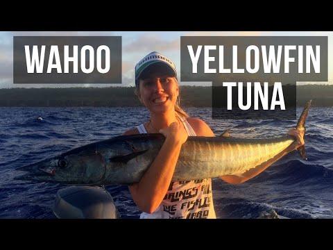Targeting Wahoo and Yellowfin in Niue (Season 4 Ep 7)