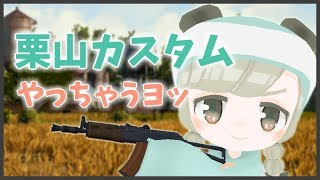 [LIVE] 🌸【PUBG】はじめての!VGamingカスタム!!【VTuber】