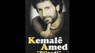 Kemale Amed-Rojek