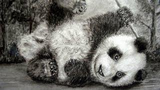 CÓMO DIBUJAR UN OSO PANDA BEBÉ / PANDA BEAR DRAWING