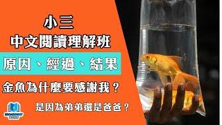 Publication Date: 2019-07-17 | Video Title: 【小三中文】閱讀理解《為什麼金魚要感謝我》?
