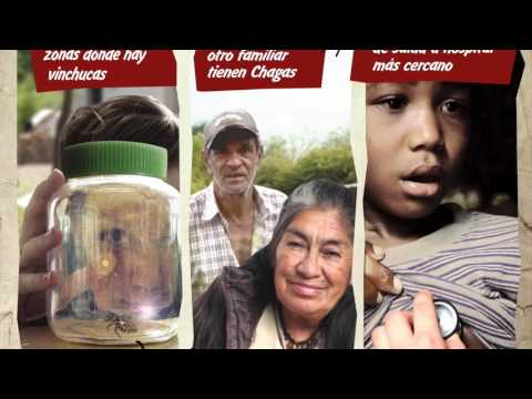 Chagas Disease – The Children