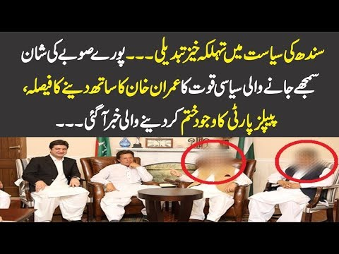 Senior Leaders Of PPP Decided To Join PTI