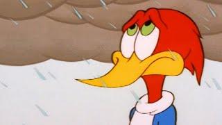 Woody Woodpecker Show | Bad Weather | Full Episode | Kids Cartoon | Videos For Kids