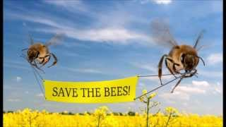 Ellie and the Bees,  Benny Hill Version