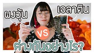 ผงวุ้น เจลาตินผง และแผ่น ต่างกันยังไง? ใช้แทนกันได้มั้ย? 🍰 VIPS Station