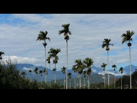 Top10 Recommended Hotels in Taitung City, Taiwan