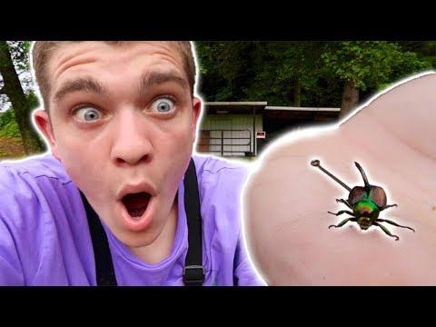 Fishing w/ Live Beetles Challenge!