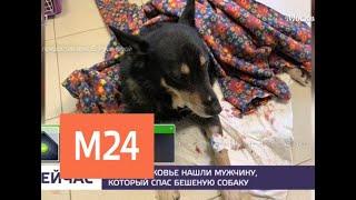 Появились эксклюзивные кадры из клиники, куда мужчина привез бешеную собаку - Москва 24