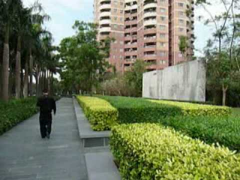 Palm Garden in Shenzhen, China