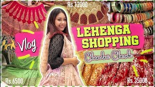 WEDDING LEHENGA SHOPPING!  CHANDNI CHOWK Vlog | 2019 BRIDAL/NON BRIDAL, FOOD & More |ThatQuirkyMiss