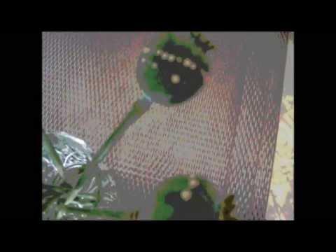 Opium Poppy Harvest ~  Papaver Somniferum-Orientalis. - Power Plant-Indica Kush