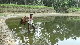 Net Fishing | Catching Lot Of Big Fish With Cast Net | Net Fishing in the village (Part-263)