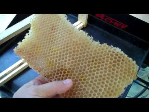 Beeswax Processing