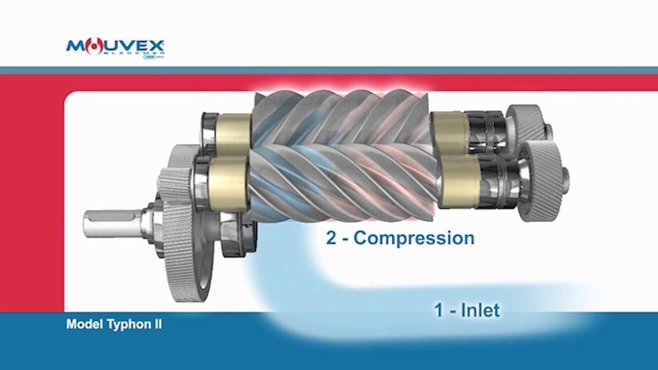 screw compressor principle mouvex overview youtube rh youtube com Rotary Screw Compressor Gallery Types of Compressors