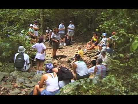 The Virgin Islands National Park