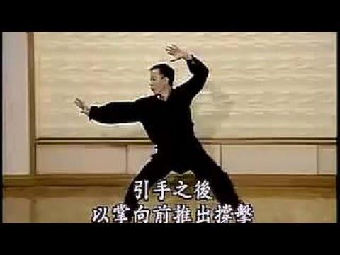 許繼八極拳 Xu Ji Bajiquan 2