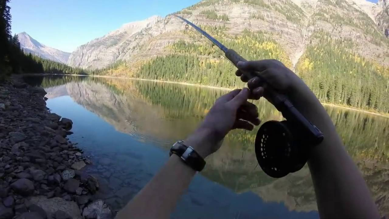 Fly fishing avalanche lake glacier national park montana for Fly fishing glacier national park