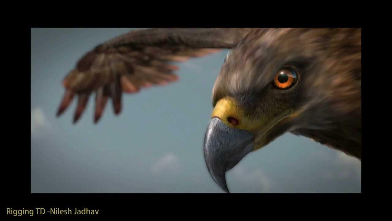 cg Eagle breakdown