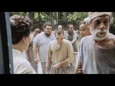 НИЗЕ – СЕРДЦЕ БЕЗУМИЯ (NISE – CORACAO DA LOUCURA), реж. Роберто Берлинер