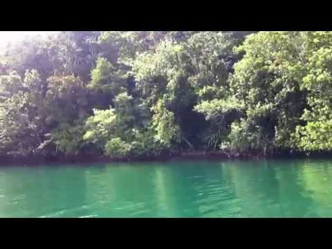 Crocodile hunting in Marovo Lagoon (Solomon Islands)