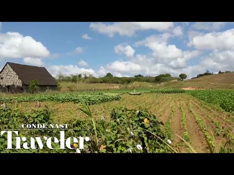 A Road Trip Through Cuba's Tobacco Country |  Condé Nast Traveler