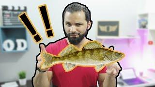 احجز جالاكسي اس 8 مسبقا ! | ما علاقة جوجل بالاسماك ؟