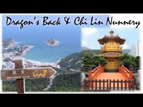 HIKING DRAGON'S BACK TRAIL & CHI LIN NUNNERY   Hong Kong Travel Vlog 🇭🇰   Meliaa