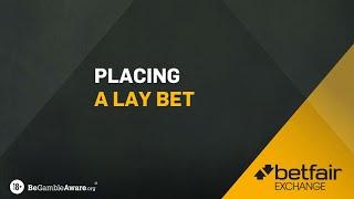 Lay betting explained betfair login michael bettinger mainz university