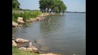 Lake Overholser Ducks July 30 2013