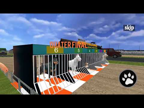 Wild Greyhound Dog Racing Ll Android Game Ll Game Rock