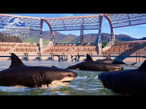 SHOW DE  MEGALODON TIBURON DINOSAURIO! recinto y estadio de tiburones Jurassic World Evolution  