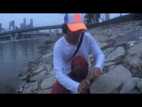 Bali Fly Fishing Club goes to Singapore (peacock bass on fly)