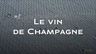Le vin de Champagne