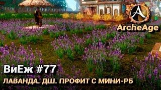 ArcheAge 3.0. ВиЕж #77. Лаванда. ДШ. Профит с мини-РБ