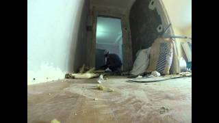 День восьмой. Демонтаж старой входной двери и установка новой.(, 2014-07-13T09:59:22.000Z)