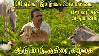 100 acres of agriculture and organic farming managed by 2 men and horse donkeys cows Bulls and goats