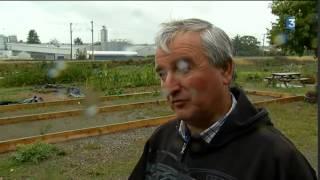 Evron : les jardins familiaux peinent à trouver de nouveaux jardiniers