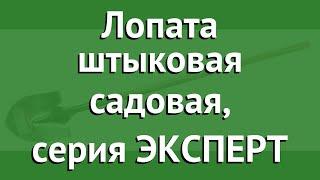 Лопата штыковая садовая, серия ЭКСПЕРТ (ЗУБР) обзор 4-39429 производитель Зубр ОВК (Россия)