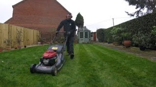 Mowing, Strimming and Edging Small Lawns.