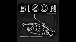 "Bison ""One Thousand Needles"""