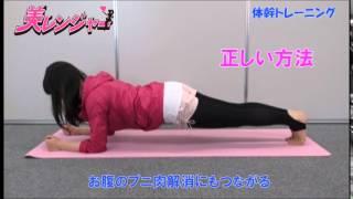 1日たった10秒!驚くほどお腹がへこむ「体幹トレーニング」 体幹リセットダイエット方法やり方 検索動画 15