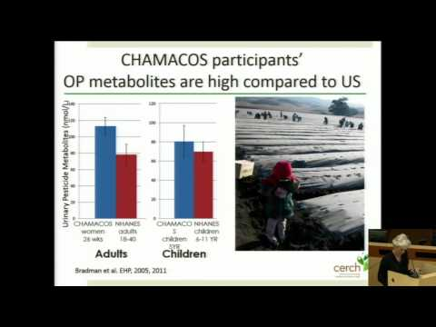 Brenda Eskenazi, PhD - presentation at the 2016 Children's Environmental Health Symposium