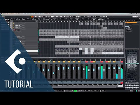Keep Your Cubase Project Sorted With These Tips | Music Production for Beginners 3