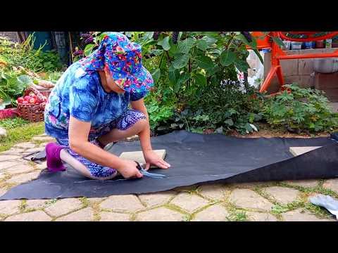 Садовая Дорожка Своими Руками   Как уложить Тротуарную Плитку Своими Руками