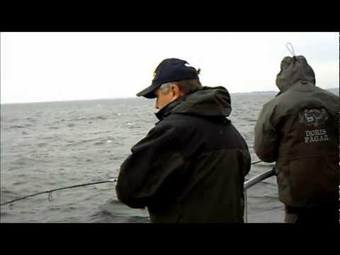 Torskfiske Öresund