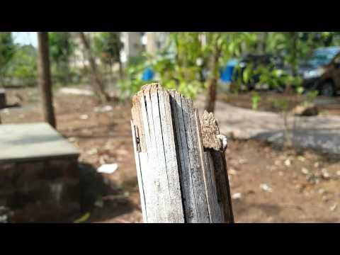 Samsung Galaxy E5 camera sample 1080p @ 30fps