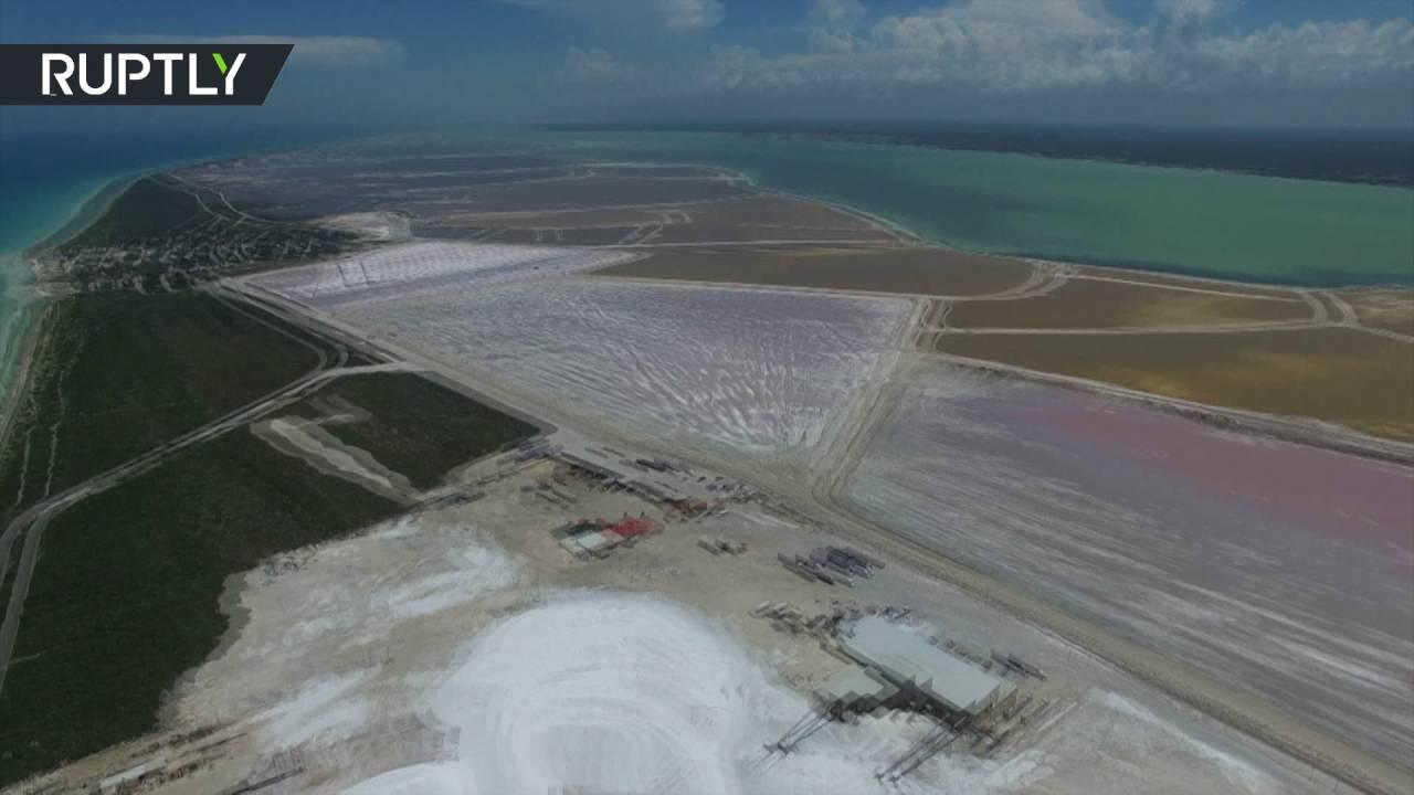 Видео: Розовая лагуна в Мексике